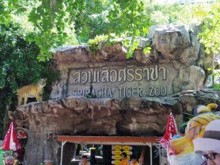 タイ東部の旅日記四日目シラチャータイガーズ